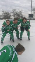 Team Steiermark Hockey-Saison